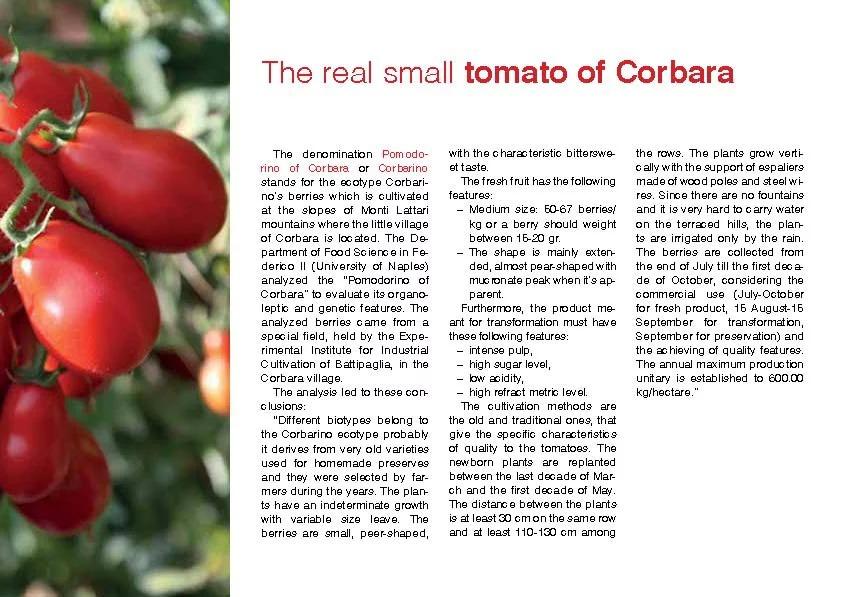Alto Artigianale Fine Food Tomato of Corbara